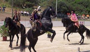 Tres jinetes ataviados con los trajes de la caballería de la Reina de Saba durante la exhibición en Menorca. :: LV